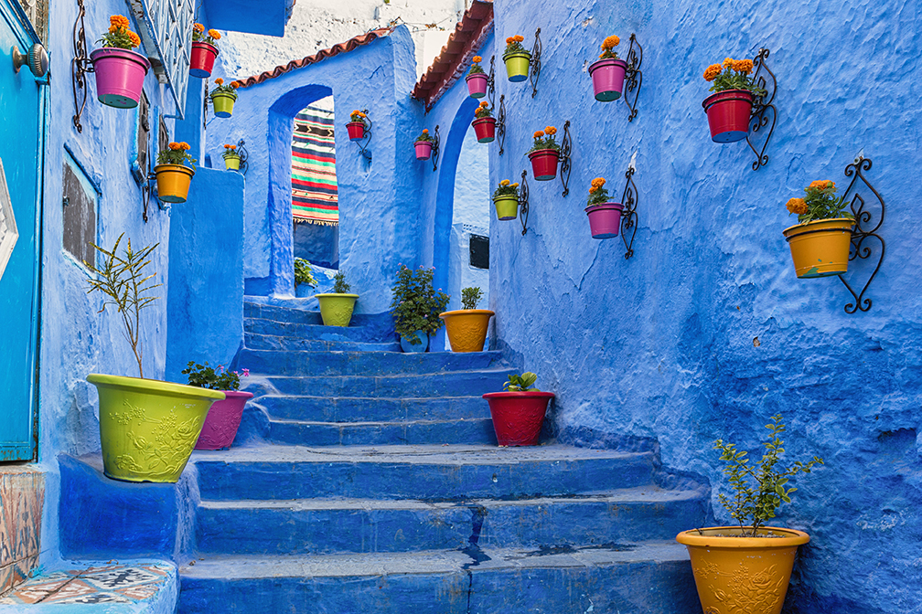 Blue wall and staircase decorated with colourful flowerpots in Chefchaouen, Morocco
