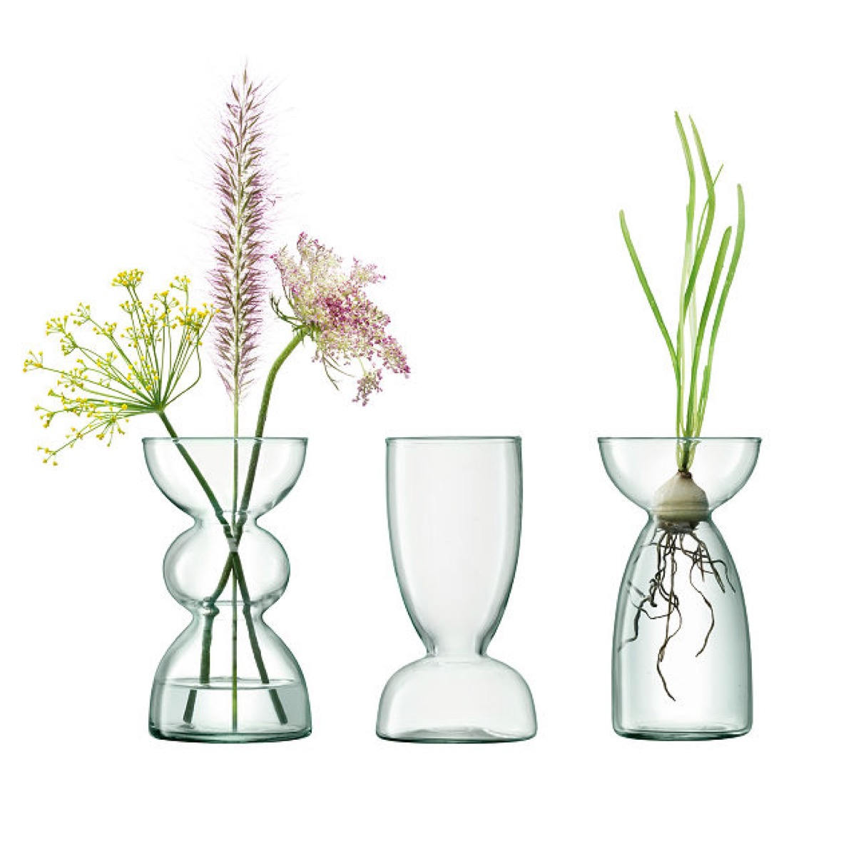 three glass vases with plants in them