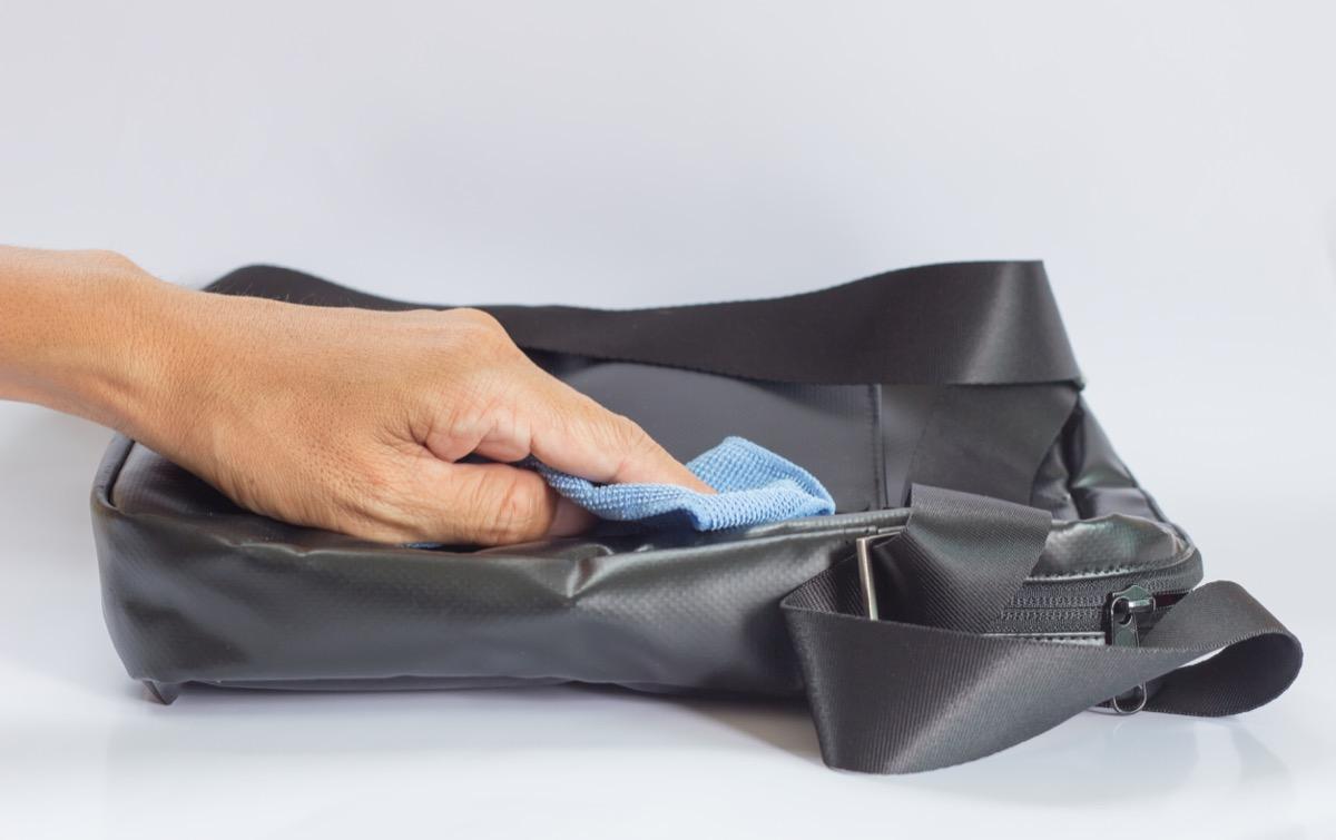 Sanitizing bag
