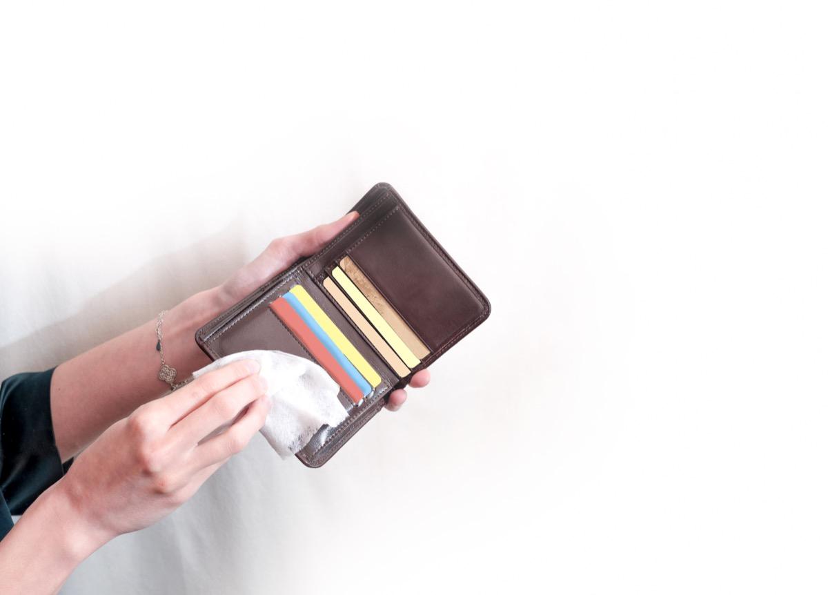 Sanitizing wallet