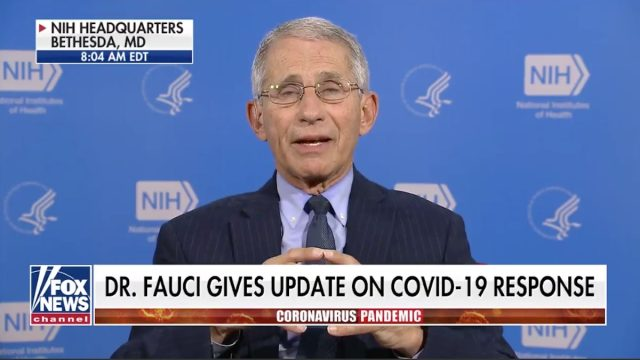 dr. anthony fauci appears on fox and friends re: reports that hydroxychloroquine cures coronavirus