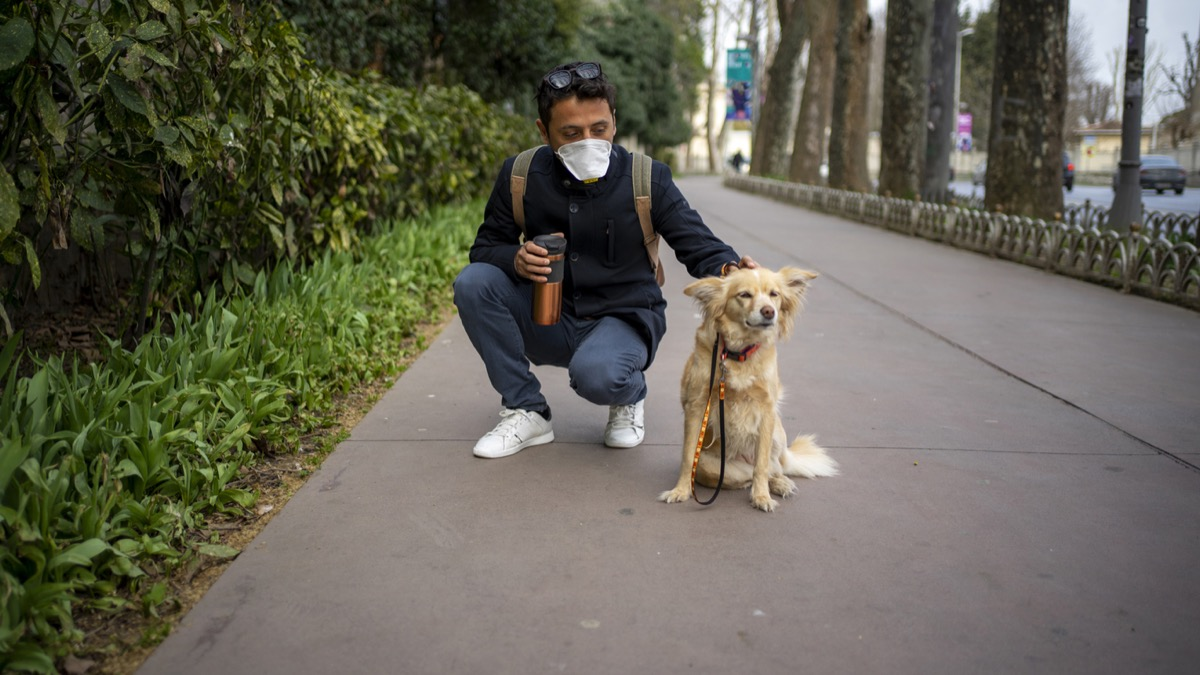 man with face mask bending down to pet dog while on a walk