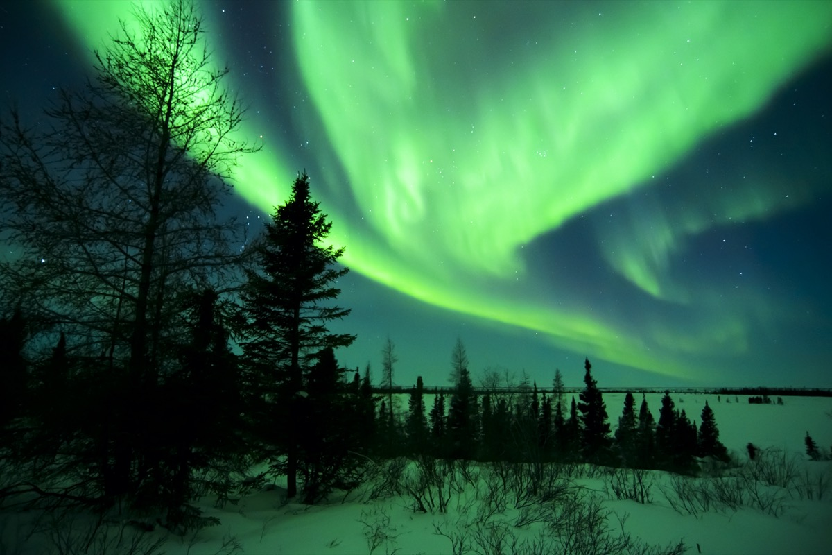 green northern lights over a forest and lake