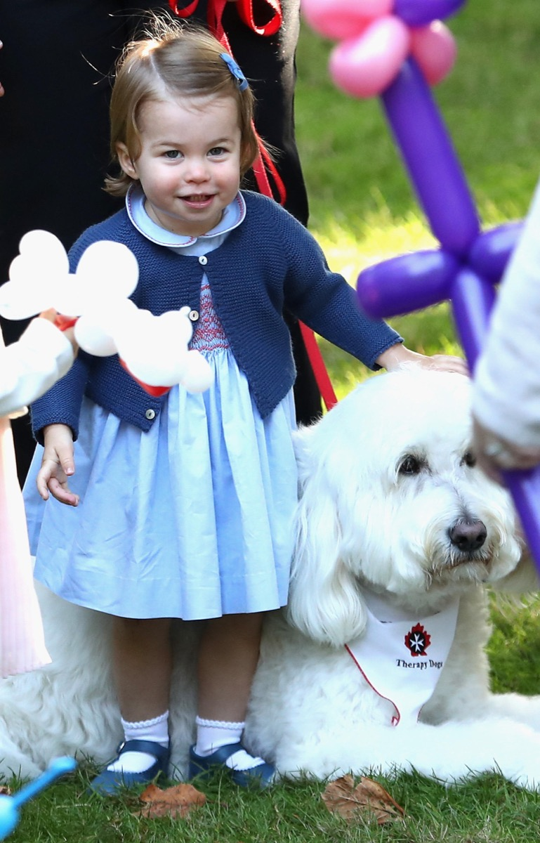 Princess Charlotte plays with a dog named Moose at a children's party at a children's party for Military families at Government House in Victoria during the Royal Tour of Canada.
