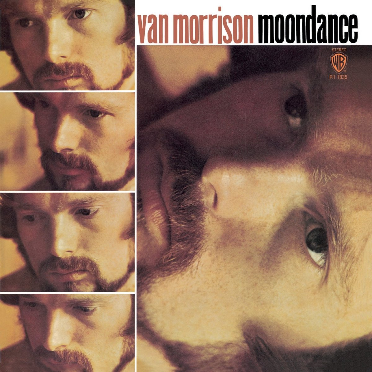 "van morrison album cover for ""moondance"""