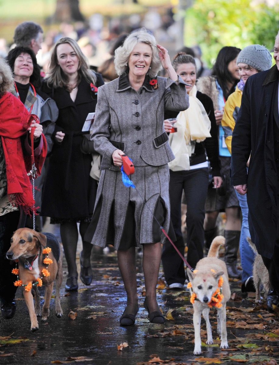 Duchess launches dog walk