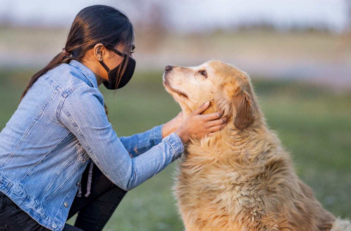 teen playing with golden retriever outside while wearing a mask.