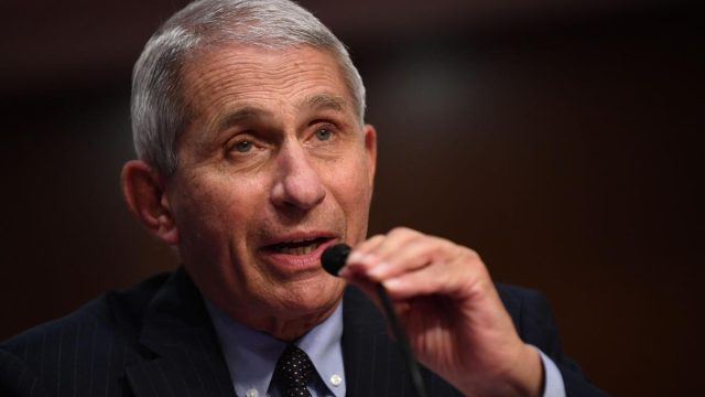 r. Anthony Fauci, director of the National Institute for Allergy and Infectious Diseases, testifies before the Senate Health, Education, Labor and Pensions (HELP) Committee on Capitol Hill in Washington DC on Tuesday, June 30, 2020