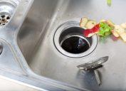 garbage disposal with food scraps
