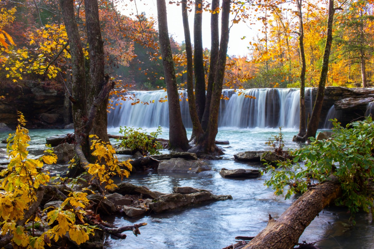 fall foliage at falling water falls in arkansas