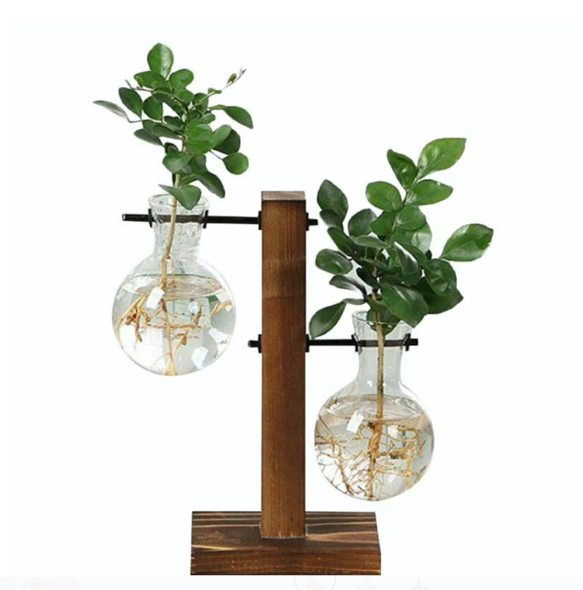 two glass vial vases in wooden stand