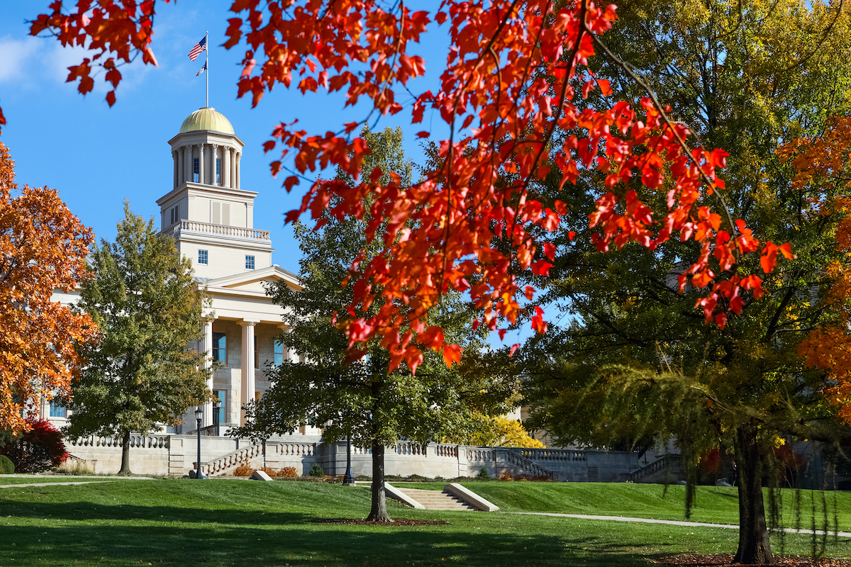 shot of trees in fall at the university of iowa