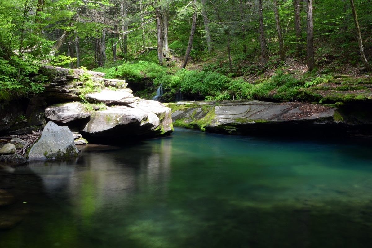 clear blue swimming hole surrounded by forest in new york