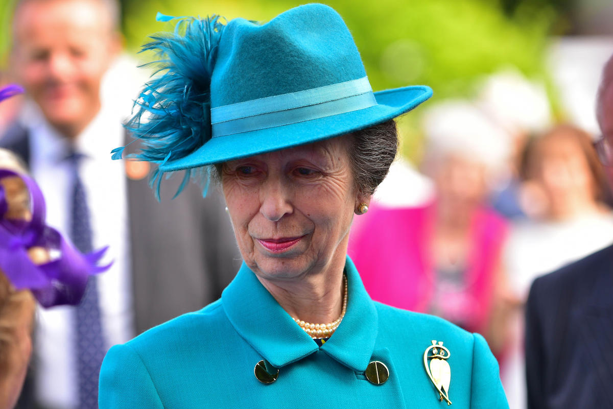 The Princess Royal attended the Secretary of State for Northern Ireland's Annual Garden party at Hillsborough Castle, Princess Anne met and spoke with visitors during a walkabout in the gardens