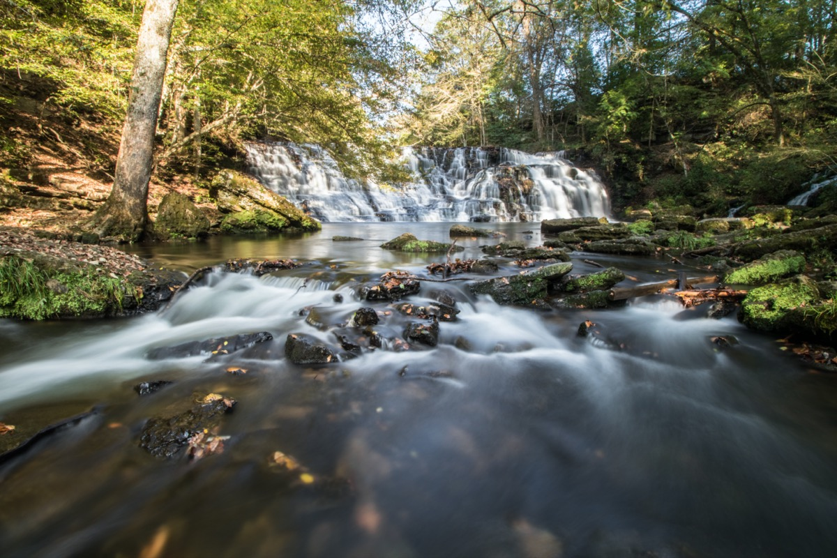 stream and waterfalls in the woods in tennessee