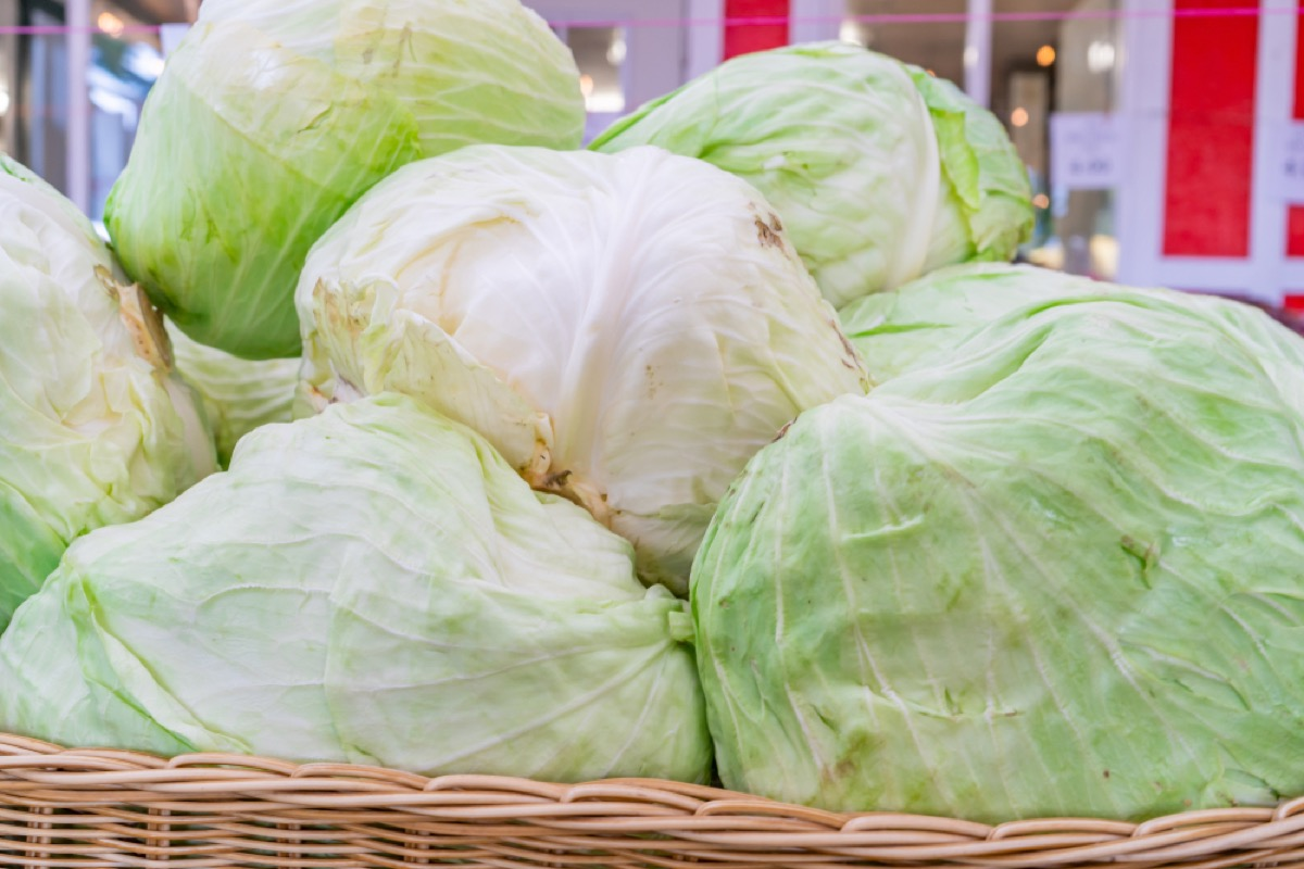 pile of iceberg lettuce