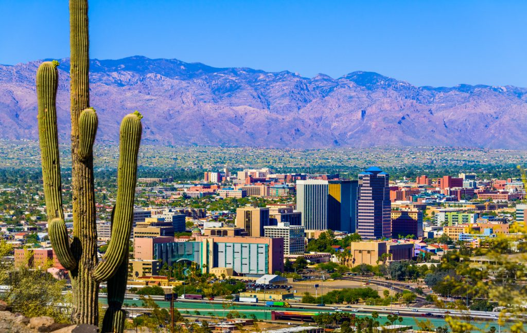 The skyline of Tucson, Arizona with cacti in the foreground