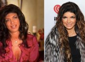 teresa giudice in her first episode and now
