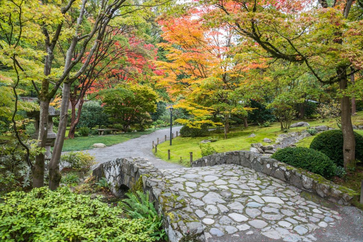 stone bridge and walkway surrounded by fall foliage at washington park arboretum in seattle