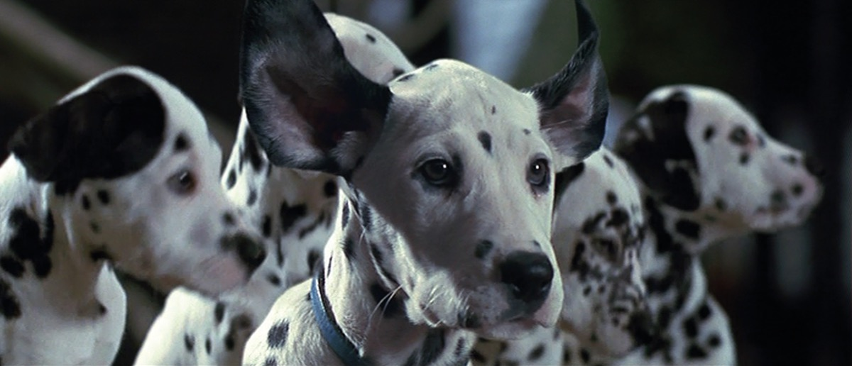 still from the 1996 101 dalmatians