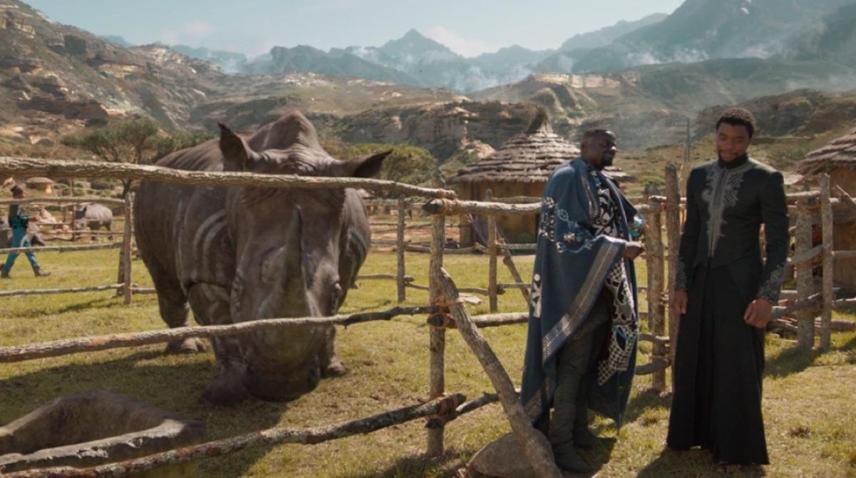 Black Panther War Rhino