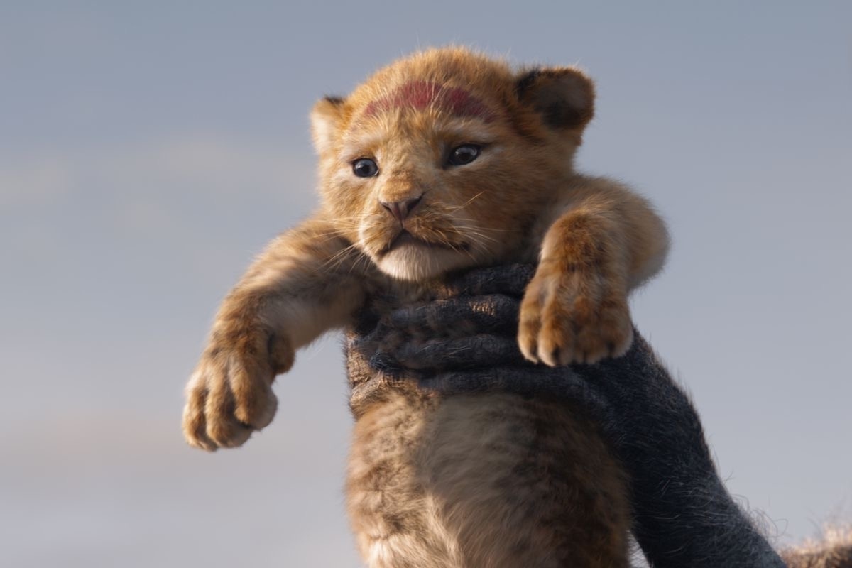 still from the 2019 lion king