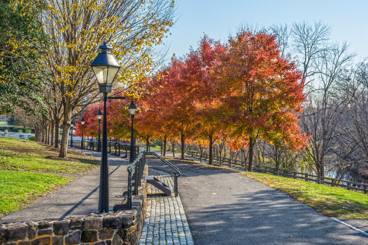 trees and walkway at a park in Burlington County, New Jersey