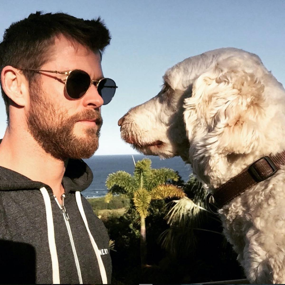 chris hemsworth and dog sunny
