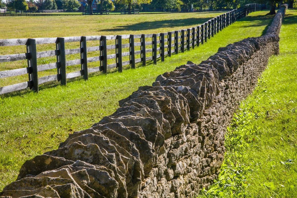 Woode and stone fence on green grass in Lexington, Kentucky