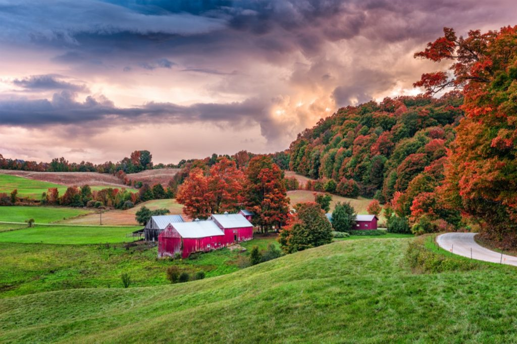 red farmhouses, orange trees, and rural land in Reading, Vermont at sunrise