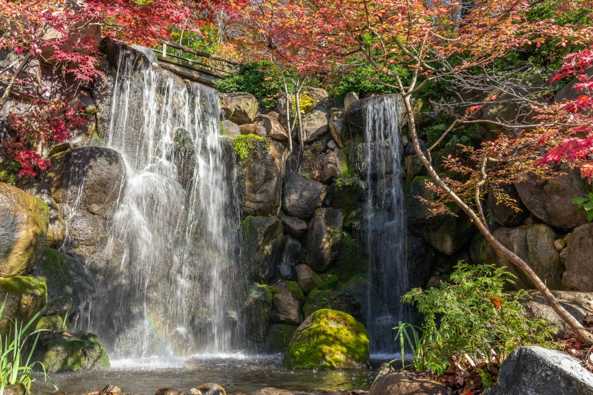 two water falls, rocks, and red and green trees in Rockford, Illinois