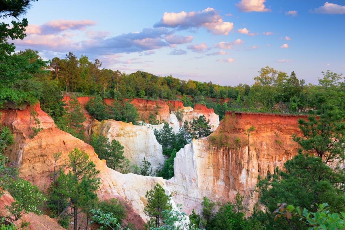 orange and white rocks and green trees at the Providence Canyon in Stewart County, Georgia