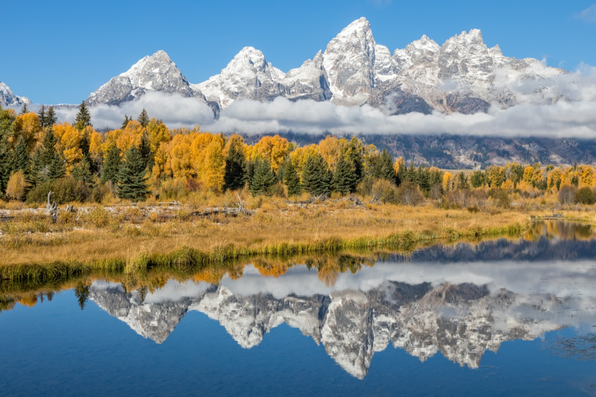 the reflection of glaciers and tress in a lake in Teton, Wyoming