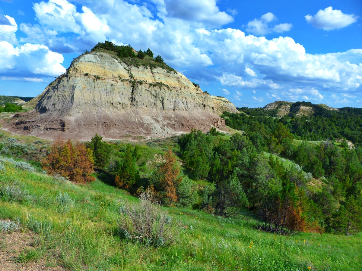 a butte and green trees at Theodore Roosevelt National Park in North Dakota