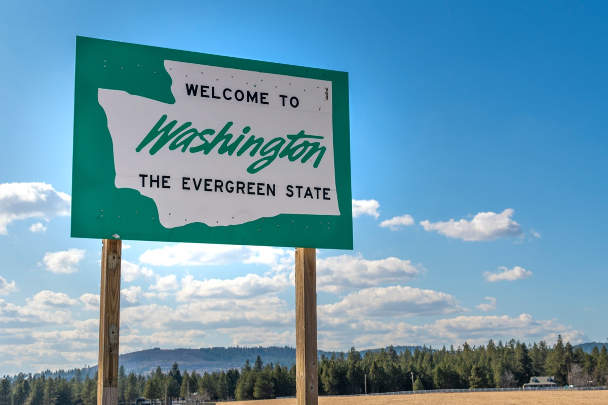 """a green """"Welcome to Washington"""" sign in sand and in front of trees"""