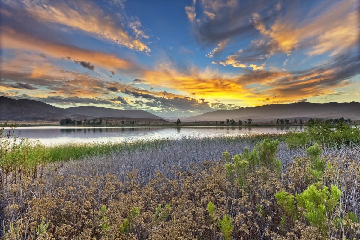 a lake, flowers, and mountains in Chula Vista, California at sunrise