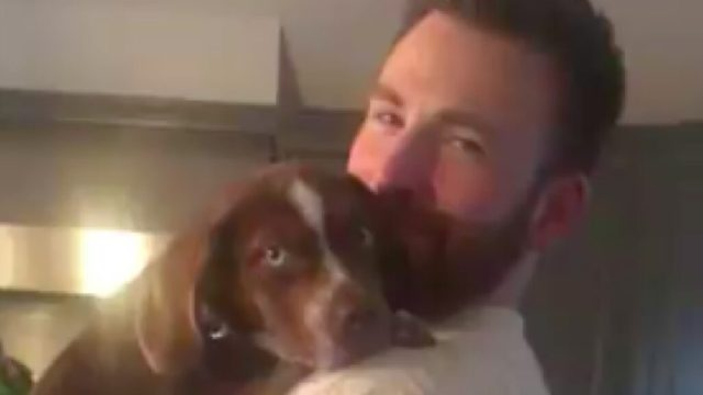Chris Evans holding Aly Raisman's new puppy