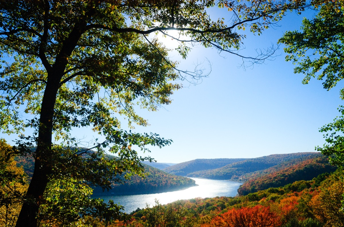 landscape photo of Forest County, Pennsylvania