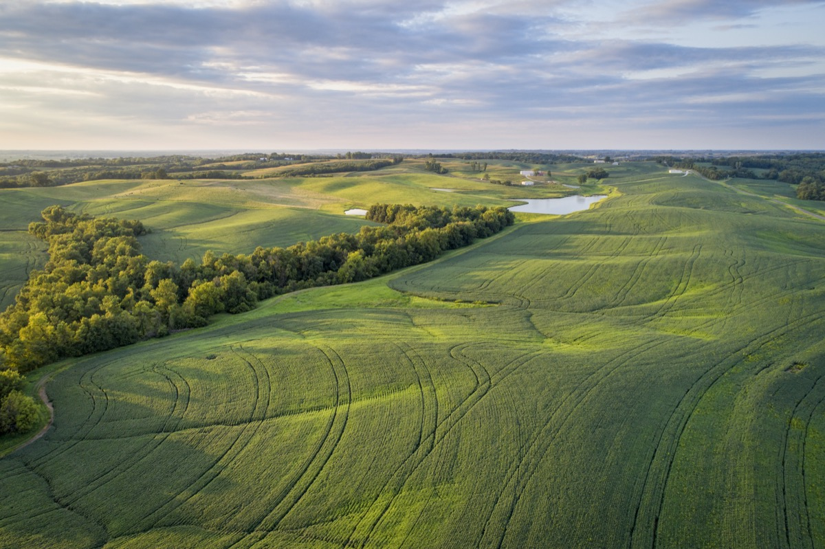 green fields by the Missouri River in Glasgow, Missouri