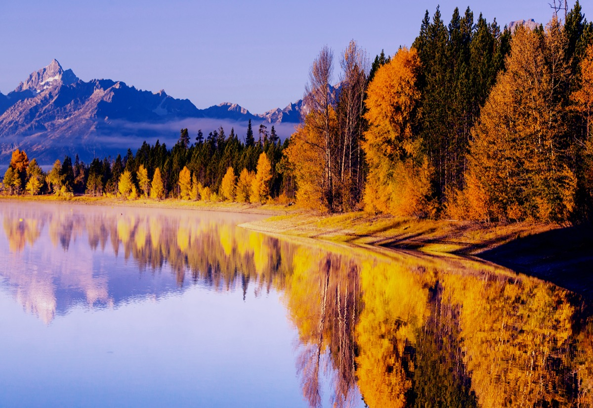 landscape photo of trees, a glacier, and lake in Grand Teton National Park, Wyoming