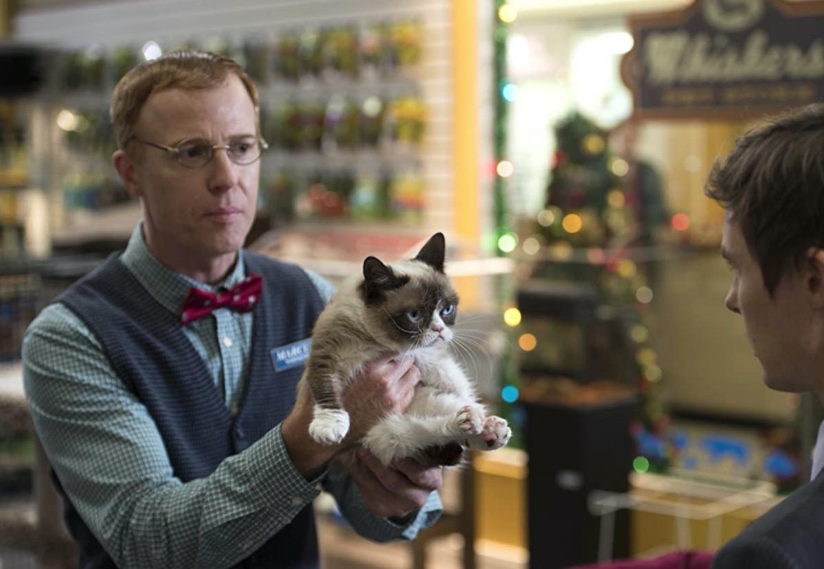 man holding grumpy cat movie still