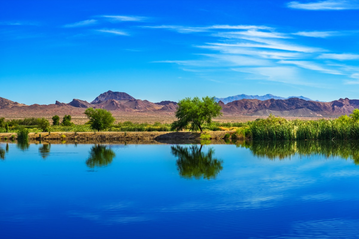 tree reflections on a a pond with a mountain behind in Henderson, Nevada