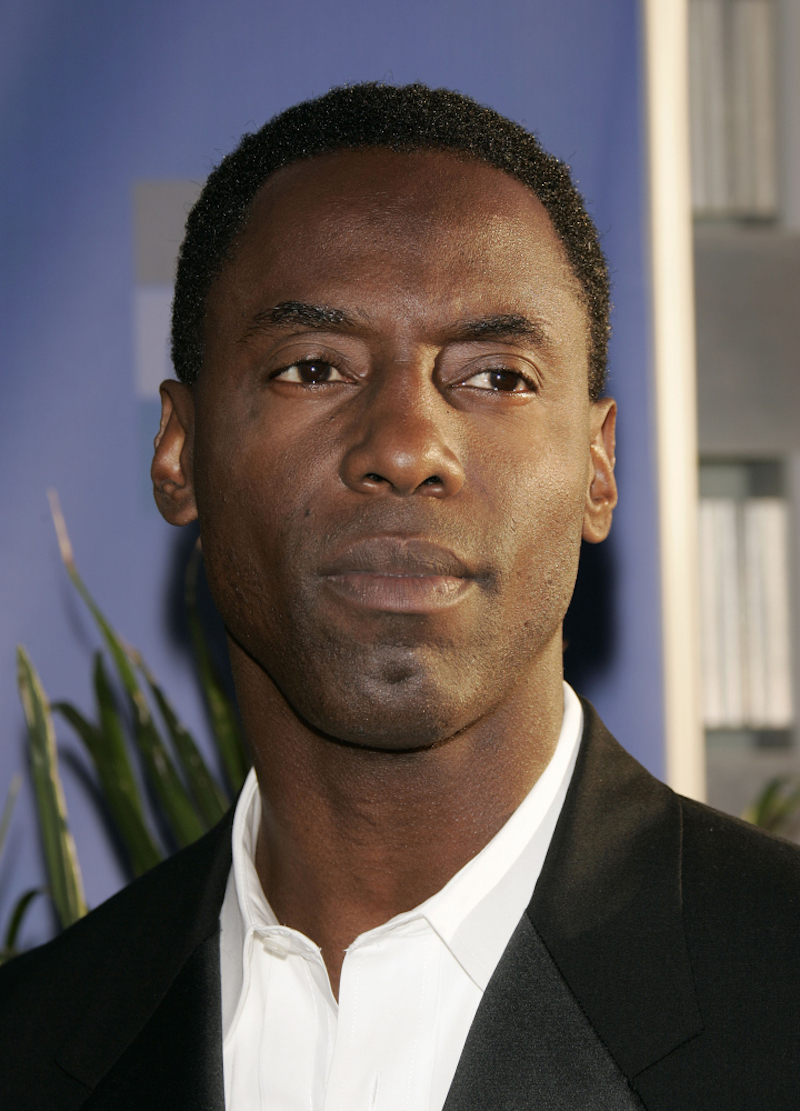 Isaiah Washington at the ABC Summer Press Tour Party 2004 on July 13, 2004 in Century City, CA.