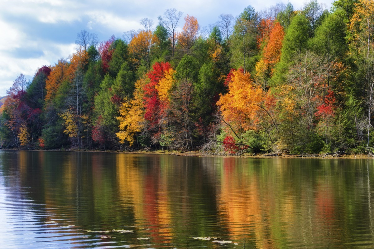 fall trees reflecting on the shoreline of Bay Mountain Lake Park in Kingsport, Tennessee