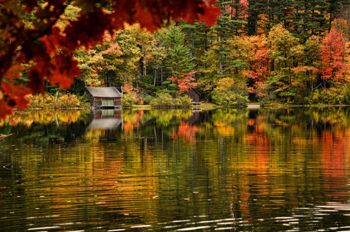 autumn trees and lake in North Conway, New Hampshire
