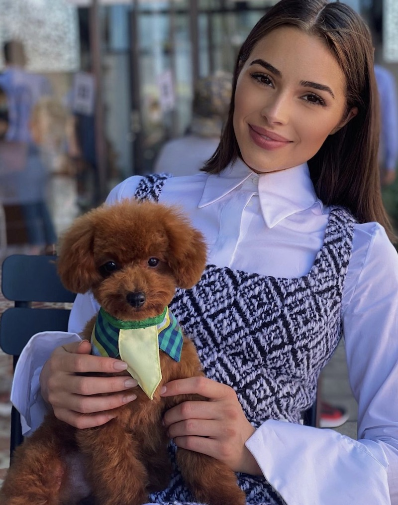 Olivia Culpo sits with new brown dog Oliver