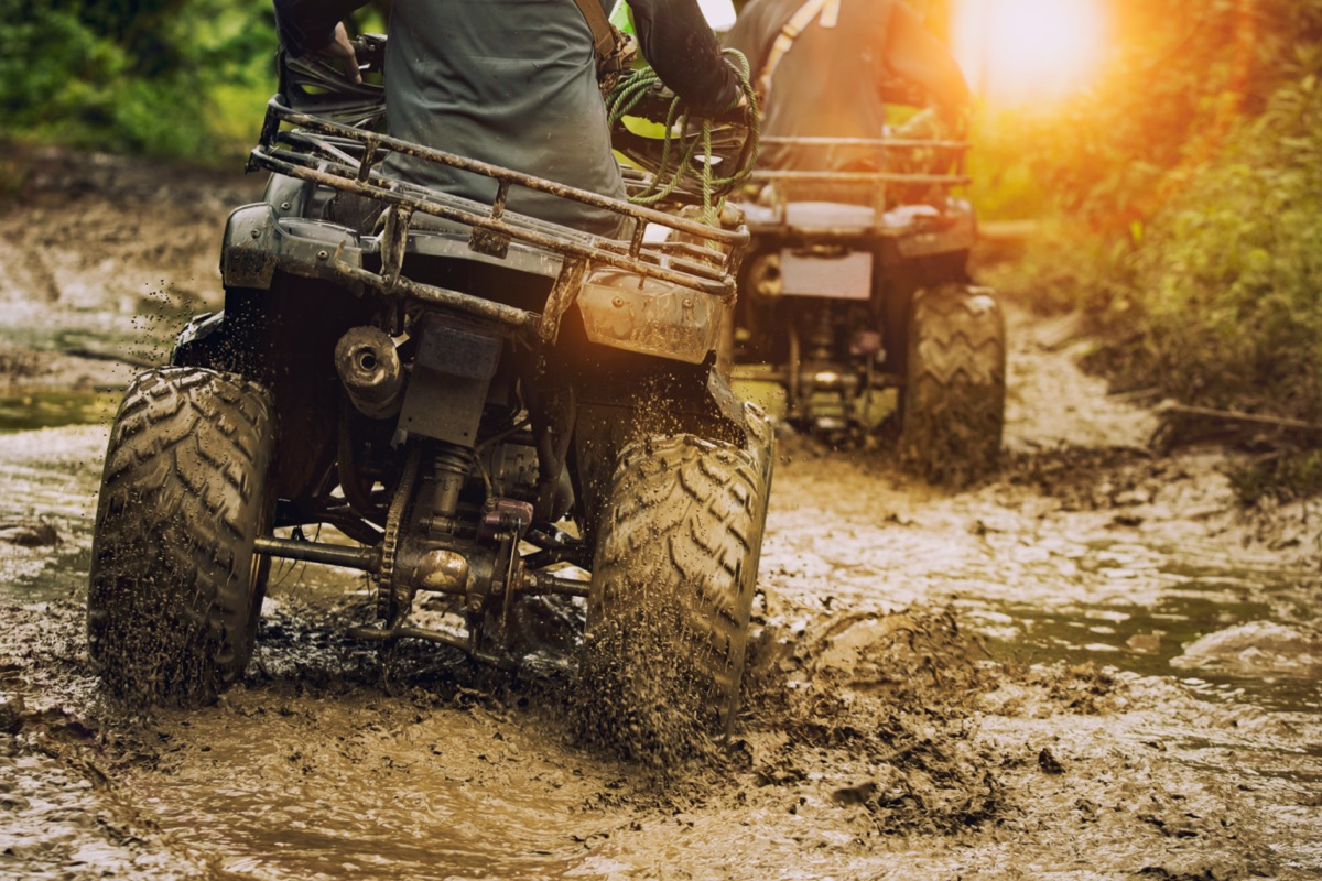 people riding atvs in mud