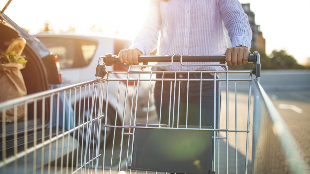 hands pushing a shopping cart