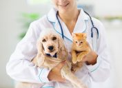 A female vet holds a puppy and kitten in her arms.