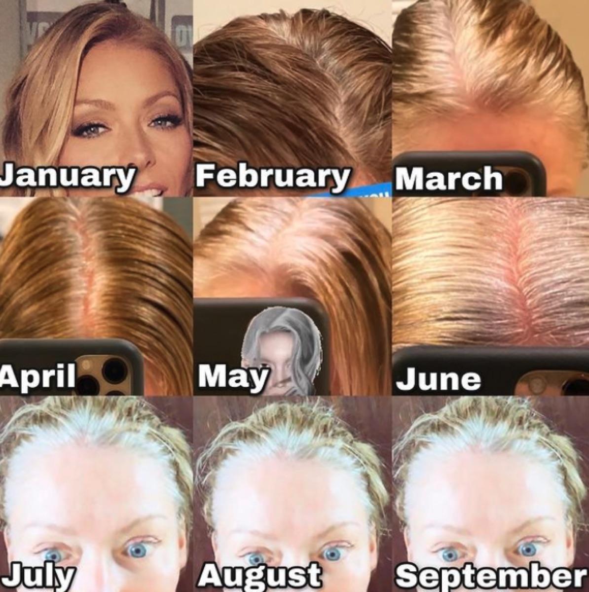 Kelly Ripa's hair progression